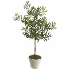 "Free Shipping on orders over $35. Buy Vickerman 27"" Artificial Green Olive Hill Tree Potted in a Round White Container at Walmart.com"