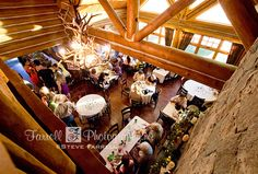 Camino Placerville wedding of Dusty & Whitney Reception Areas, Wedding Reception, Wedding Day, Log Cabin Wedding, Deer Antler Chandelier, Sacramento Wedding Photographers, Fall Themes, Bouquet Toss, Father Daughter Dance