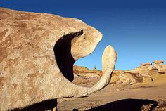 Photographs of mysterious rock formations in the Bisti Badlands Wilderness in northen New Mexico. Science Pics, Balanced Rock, Painted Hills, Like A Rock, Land Of Enchantment, Rock Formations, Rocks And Gems, Little Monsters, Stone Art