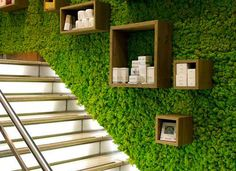 Buy our artificial vertical gardens, hedges & plants to fit your wall, fence, or structure in Australia. Do you also need help with your green wall installation? Garden Wall Designs, Garden Wall Art, Diy Backdrop, Wall Backdrops, Backdrop Wedding, Commercial Interior Design, Commercial Interiors, Island Moos, Moss Wall Art