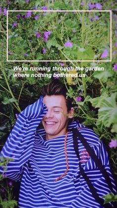 Harry wonderful styles