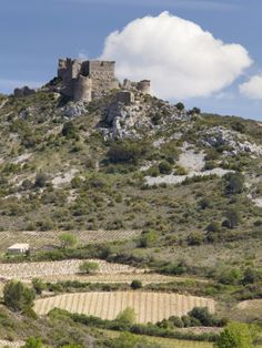 The Cathar Castle of Aguilar in Languedoc-Roussillon, France