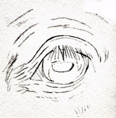 Draw Horse Eyes Step by Step: Draw a Horse Eye - Preliminary Sketching