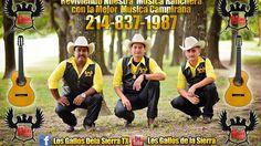 Indita Mia - Los Gallos de La Sierra