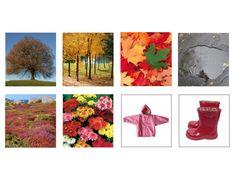 Seasons Activities, Weather Seasons, Elementary Science, Matching Games, Four Seasons, Montessori, Things To Do, Preschool, Environment