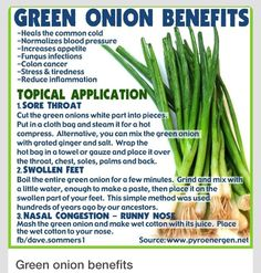 health benefits of green onions Green Onions, Green Beans, Onion Benefits Health, Fruit Benefits, Hot Compress, Increase Appetite, Eat To Live, Reduce Inflammation, Healthy Life