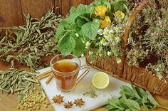 Neexistuje bylinka, která by nebyla něčím léčivá. Ale pozor! Na každého působí trošičku jinak… Budete se divit, ale také podle toho, kdy jste se narodili. Každé znamení zvěrokruhu je citlivé na něco jiného, má své neduhy a bolístky, a proto potřebuje i »svoji« rostlinku. Podívejte se, co uzdraví vás! Nordic Interior, Healing Herbs, Korn, Health Fitness, Tea, Plants, High Tea, Health And Wellness, Medicinal Plants