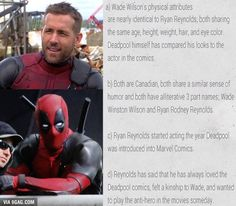He's born to be Deadpool! (But Deadpool is actually a blond.)<< (So is Ryan Reynolds. Marvel Funny, Marvel Memes, Marvel Dc Comics, Deadpool Comics, Deadpool Stuff, Avengers Memes, Deadpool Facts, Dead Pool, Deadpool Y Spiderman