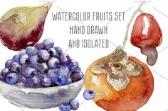 In this package you'll find set of 4 fruits and berries illustrations (persimmon fruit, cashew, figs, blueberry) hand drawn watercolor, isolated on white Persimmon Fruit, Watercolor Fruit, Macro Photography, Fig, Blueberry, Berries, How To Draw Hands, Clip Art, Illustrations