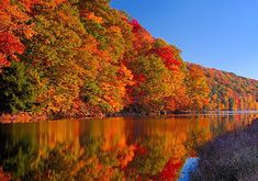 Fall is a great time to take a boat ride in Branson, MO  http://branson-missouri.com/news/fall-boating-branson
