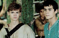 the maze runner - Thomas and Newt - so amazing /// notice Thomas looks at Newt, then a few seconds later Newt glances at him when he isn't looking oh shuck I SHIP IT SO HARD