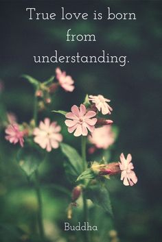 Love is understanding.  Click on this pic for more love quotes!