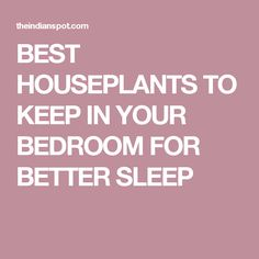 BEST HOUSEPLANTS TO KEEP IN YOUR BEDROOM FOR BETTER SLEEP