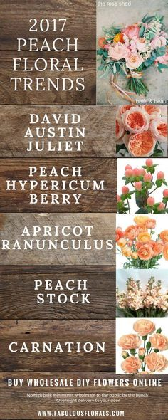 Wedding Trends! Peach Wedding Flowers chart. How to DIY Wedding Flowers