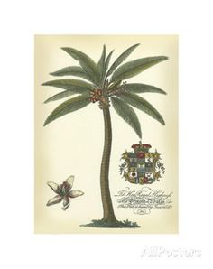 Palm and Crest I Art - AllPosters.ca
