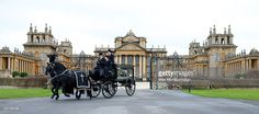 A horse drawn hearse carrying the coffin of John Spencer-Churchill, 11th Duke of Marlborough leaves Blenheim Palace on route to his funeral at the church of St Mary Magdalene on October 24, 2014 in Woodstock, England.