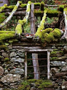 decaying cottage
