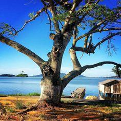 Lagoa do Imaruí, Imaruí, Santa Catarina, Brasil