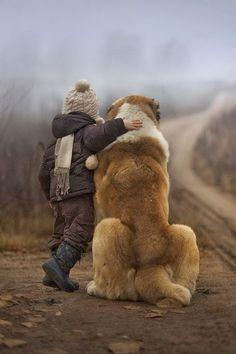 Дружба - девочка и большая собака