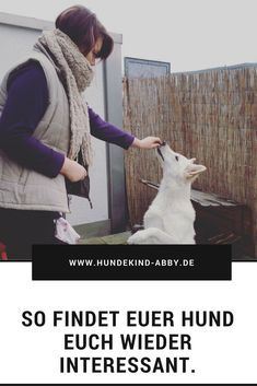 #Hund #Hundeblogger #Hundeliebe #Wissen #Hundeerziehung Hunde || Erziehung || DIY || Wissen || Gesundheit