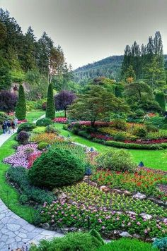 Amazing Gardens, Beautiful Gardens, Beautiful Flowers, Beautiful Places, Amazing Places, Buchart Gardens, Foto Picture, Gardens Of The World, Sunken Garden