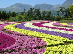 Hana Koen or Flower Park in Kuju