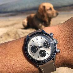 REPOST!!!  Relax on the beach  #daytona#daytonavintage#6240#rolex#rolexpassion#rolexpassionreport#rolexpassionmarket#vintagestyle #watchgram #vintagepassion #tudor#dog#beach#hodinkee#watchesaddict #vintagestyle #watchfam #watchgram #watchnerd #watchgeek #watchoftheday #watchanish #watchlover #watchcollector  repost | credit: ID @robgio73 (Instagram)