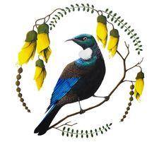 nz art for kids . Wall Art Designs, Design Art, Glass Design, Tui Bird, Decoupage, Maori Patterns, New Zealand Art, Map Wall Art, Wall Murals