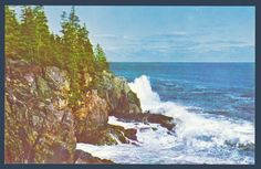Postcards - United States # 1163 - Otter Cliff, bar Harbor, Maine
