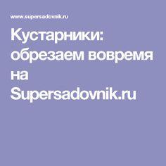 Кустарники: обрезаем вовремя на Supersadovnik.ru