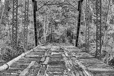 bridging uphapee,old highway 37 bridge,truss bridge,abandoned bridge,iron bridge,jc findley,macon county,alabama bridges,bridges of al,alabama travel,tuskegee,auburn,auburn alabama,auburn al,fall in south alabama,chewacla creek,streams,old bridges,antique bridge,deserted bridge,rural alabama,country life,southern accents,deeply southern,uphapee creek bridge,southern backroads,alabama highways,back roads,macon co rd 37,uphapee creek,chewacla creek,Black and White