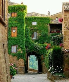 La provence, Francia