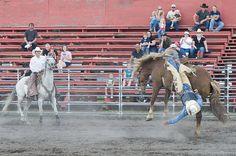 Hold on! Cheney, WA Rodeo  courtesy: Jack High