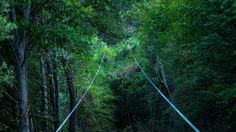 California's Longest Zip Line Opens at La Jolla Indian Reservation | NBC 7 San Diego