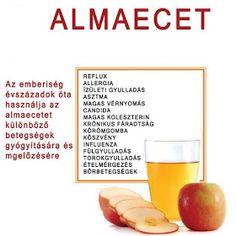 Életmód cikkek : Zöldség és gyümölcsök hatásai Herbal Remedies, Health Remedies, Natural Remedies, Healthy Drinks, Healthy Snacks, Healthy Recipes, Nutrition, Eating Well, Natural Health