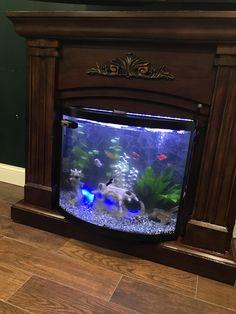 Aquarium Advice Aquarium Forum Community Beaucastle S