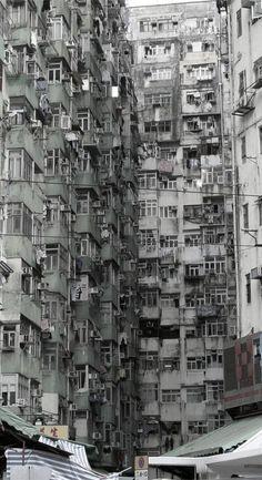 ,urban jungle.