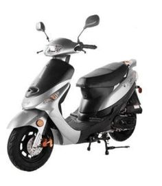 From Family Powersport:You'll love the fun Taotao Pony motor scooter's smooth handling and unbelievable fuel economy! Triumph Motorcycles, Motorcycles For Sale, Electric Moped Scooter, 150cc Scooter, Electric Mopeds, Ducati, Chopper, Mopar, Motocross