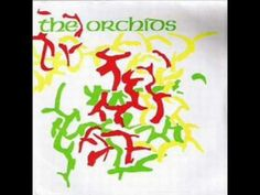the orchids; peppermint freedom. sarah records perfection.