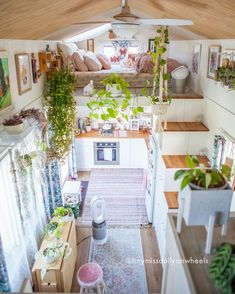 Tiny House, Small Spaces, Tropical, Table Decorations, Bed, Wheels, Furniture, 3 Years, Melbourne