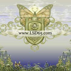 Legacy_Star_Designs