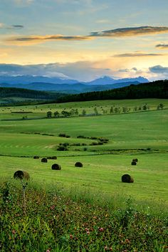 oh how I love southern Alberta. The foothills will always be a place I call home.
