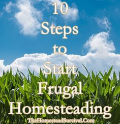 10 Steps to Start Frugal Homesteading  Homesteading  - The Homestead Survival .Com