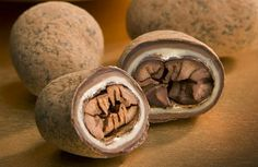 Cocoa beans covered in three kinds of chocolate!