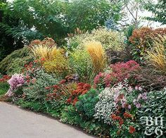 LowWater Garden Plan Landscaping Gardening and Landscaping ideas