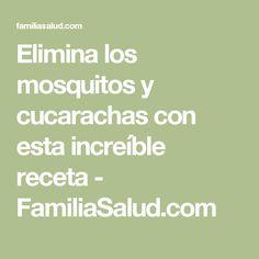 Elimina los mosquitos y cucarachas con esta increíble receta - FamiliaSalud.com