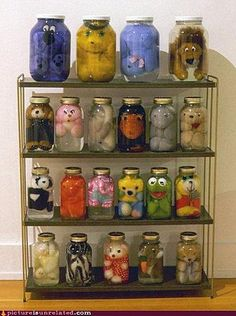 """How to """"preserve"""" stuffed animals.i figured out what to do with all my stuffed animals lol Ideias Diy, Oeuvre D'art, Plushies, Cool Stuff, Funny Stuff, It's Funny, How To Make, Inspiration, Kermit"""