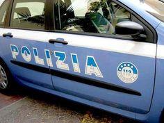 Campania: #Castellammare di #Stabia: cinquante piante di cannabis e pistola (link: http://ift.tt/1UNpedP )