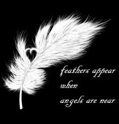 This is actually a nifty reminder! Now I'll try and remember that, every time I see a feather.