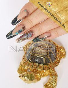 Turtle inspiration